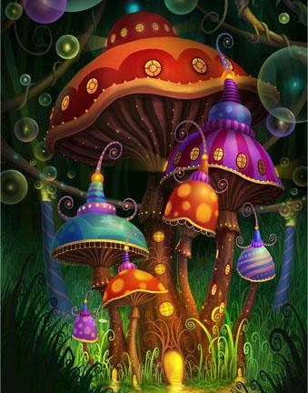 magic mushrooms Les Champignons & l'Evolution