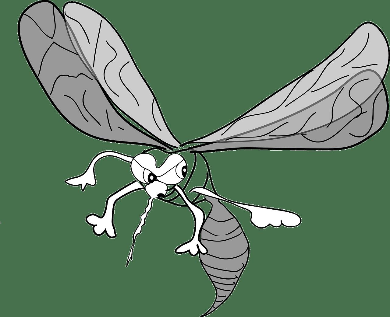 La Gnose du Moustique