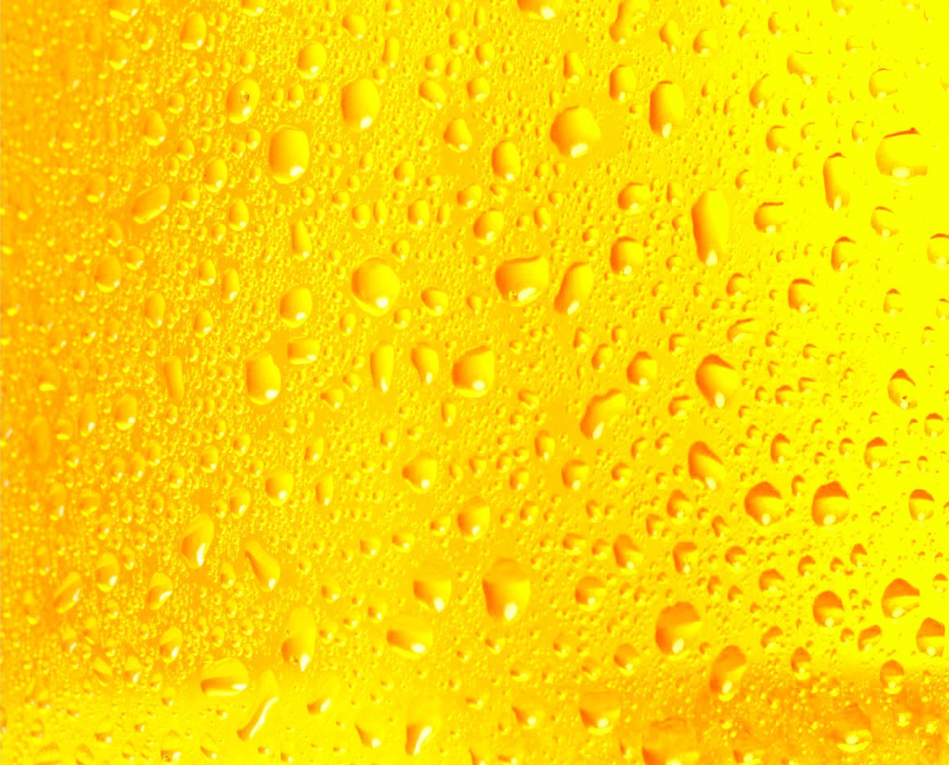 L'Océan de Limonade & les Temps Modernes
