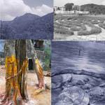Initiation sur la montagne sacrée d'Arunachala [2eme partie]