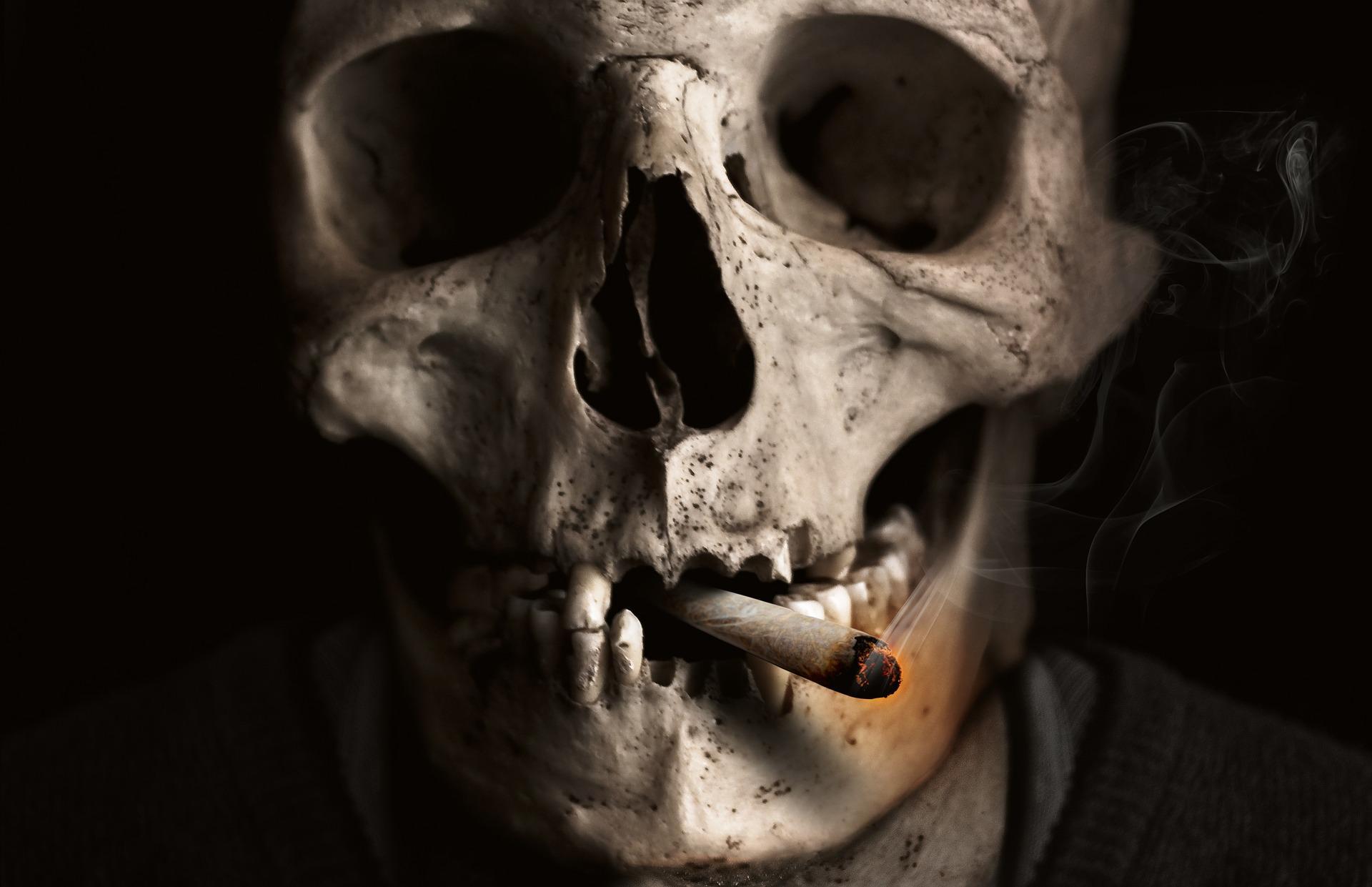 skull and crossbones 1418827 1920 - Les Rituels du Fameux Ordre des Tanches de l'Occulte
