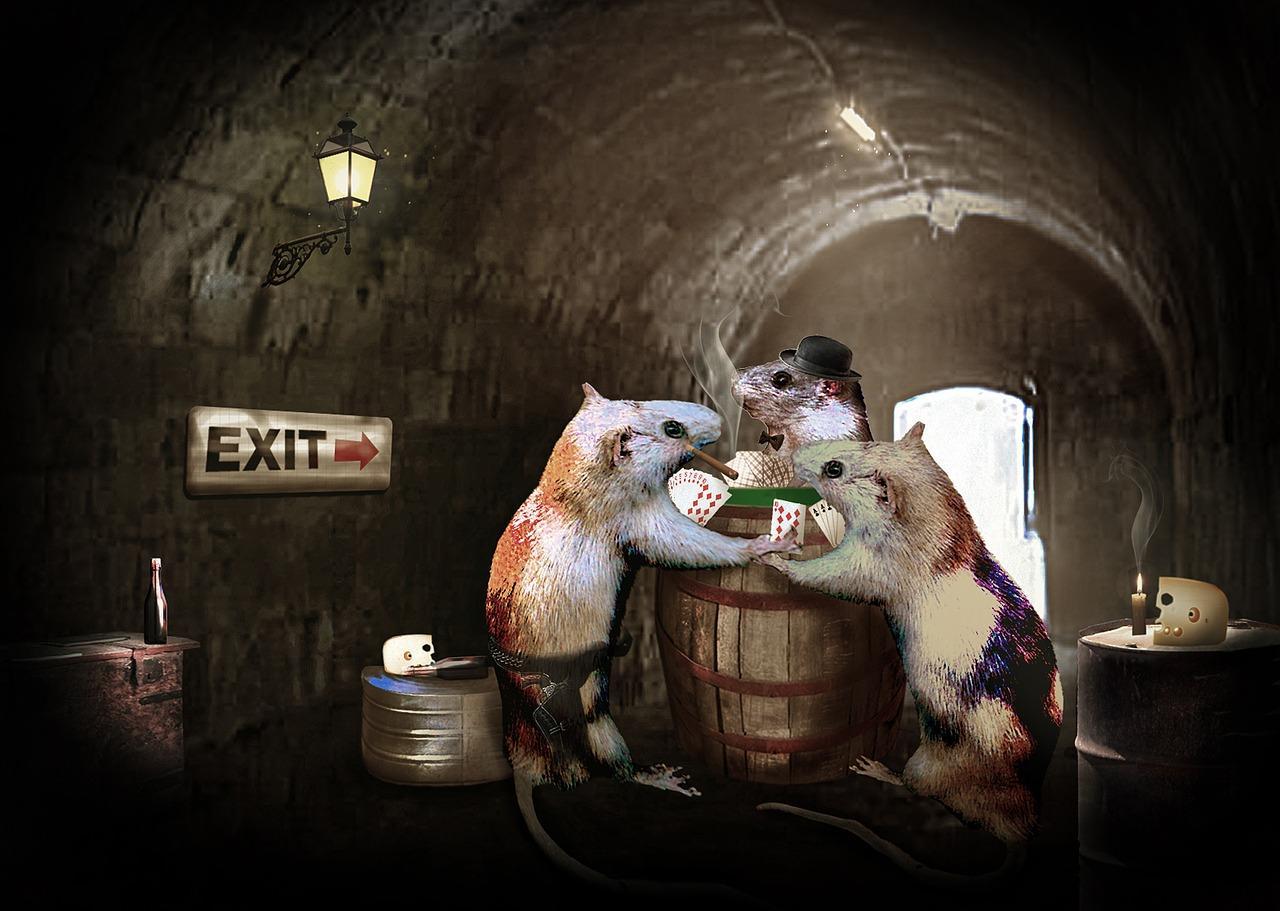 Des trous à rats dans la Babylone de l'Information